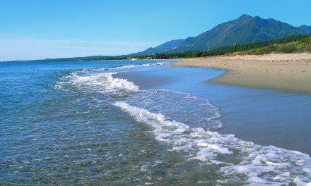 Location maquis plage été 2016